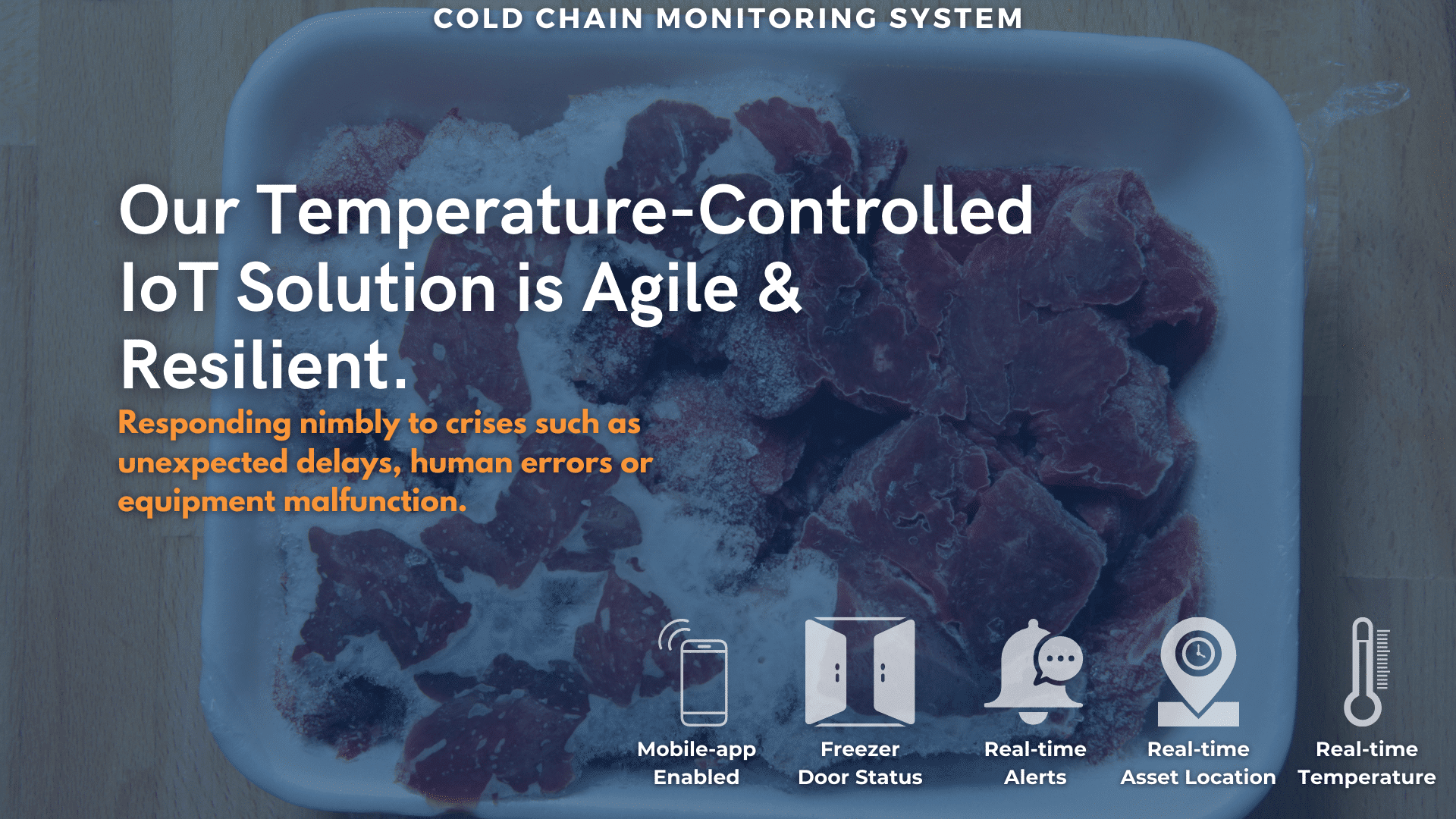 Cold Chain Monitoring System 1-min